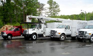 ClearTree's tree removal fleet